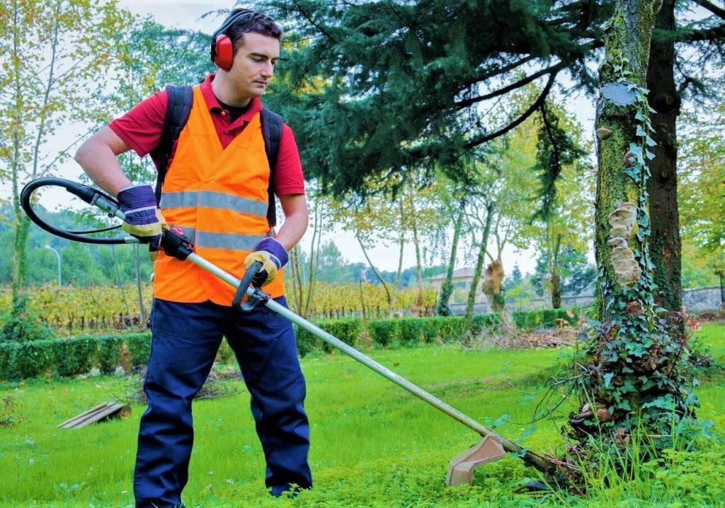 Servicio de jardineros, para el mantenimiento de jardines en viviendas unifamiliares